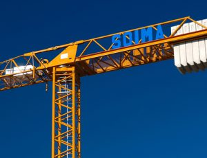 Grues Neuves